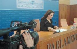 PP-A estudiará la propuesta de IU de modificar la Ley de Cámara de Cuentas para que todos los grupos estén representados
