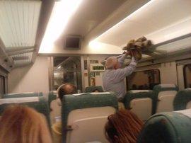 Renfe ofrece 564 plazas extra en los trenes Alvia entre Asturias y Madrid durante Semana Santa