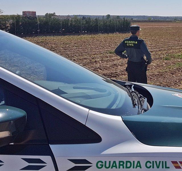La Guardia Civil Investigó A Dos Vecinos De Badajoz Por La Sustracción De 700 Ki