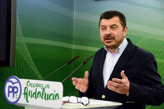"""Comunicado Pp Andaluz+Audio+Foto. El Pp Califica De """"Propaganda"""" La Política De"""