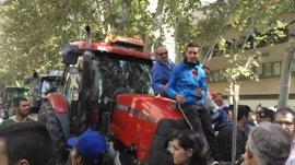 """(AV) Ayuntamiento Murcia, sobre la protesta de los agricultores: """"Es una situación sin precedentes e ilegal"""""""