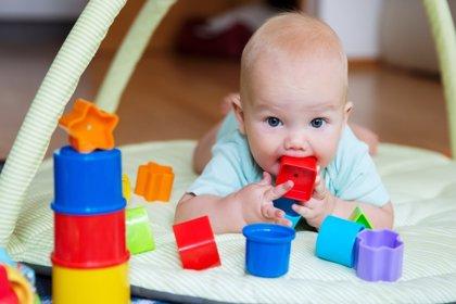 El bebé explorador y su desarrollo cognitivo