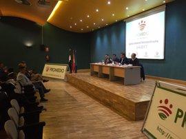 La Diputación de Badajoz plantea invertir 2,1 millones en tres años para acabar con los vertederos ilegales de escombros