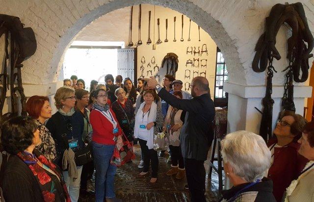 Fundación Unicaja y Vértice Salud visitas culturales mayores museos málaga
