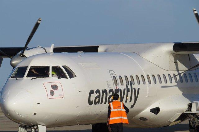 Canaryfly