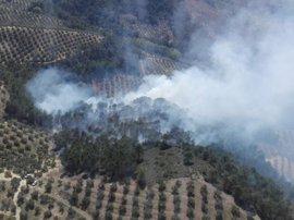 Medios del Infoca trabajan en la extinción de un incendio forestal en Siles