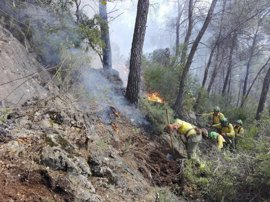 La orografía del terreno y la abundante vegetación complican extinción del incendio de Siles (Jaén)