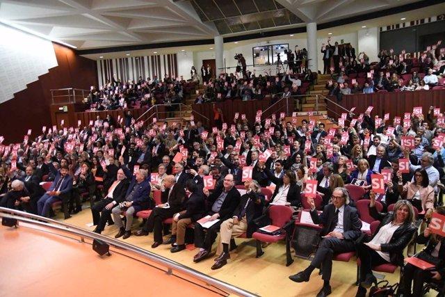 Conferencia prelimiar de Lliures