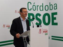 """El PSOE pide al PP que """"deje de enredar e intentar manchar"""" el nombre del partido con Fundación Guadalquivir"""