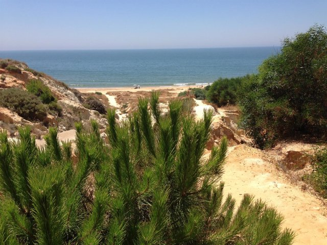 Playa de la Fontanilla, en Mazagón (Huelva)