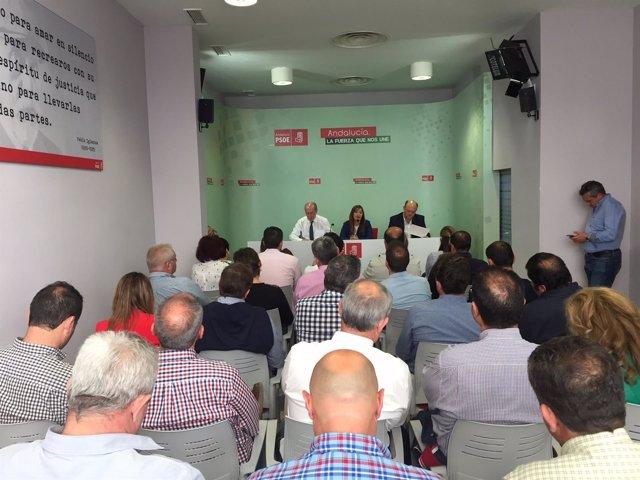 Consejo de Alcaldes del PSOE.