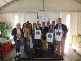 'Primavera y Vino' arranca como escaparate para dar a conocer los vinos del Altiplano de Sierra Nevada