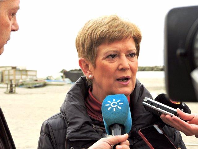 La concejal del PSOE en el Ayuntamiento de Almería Consuelo Rumí