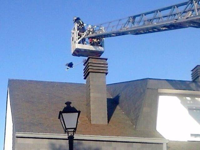 Bomberos durante el rescate del halcón harris.