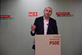 """El PSOE-A expresa su """"profundo dolor"""" por la muerte de Chacón, una mujer """"muy importante"""" del partido"""