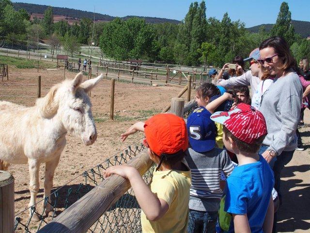 Gamarra, con los niños en la granja de La Grajera