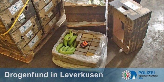 Encuentran 400 kilos de cocaína en un cargamento de plátanos