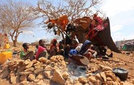"""ACNUR llama a """"evitar a cualquier precio"""" la hambruna en el Cuerno de África, Yemen y Nigeria"""