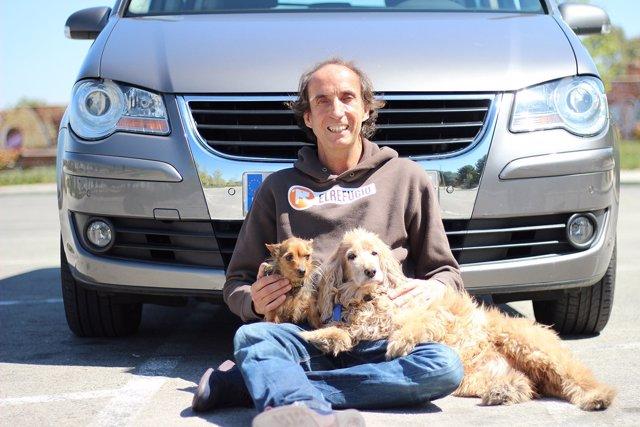 Cómo viajar en coche con un perro de forma segura