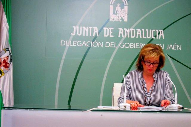 Teresa Vega en la rueda de prensa.