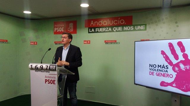 Sanchez Teruel, en rueda de prensa en Almería