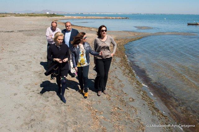 Visita consejera Martínez-Cachá playas Mar Menor