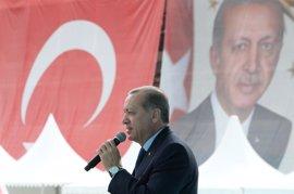 Erdogan asegura que el voto en el extranjero para el referéndum constitucional se ha disparado