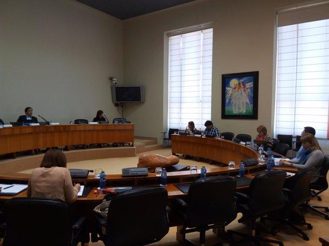 Comisión de Pesca de la Cámara gallega