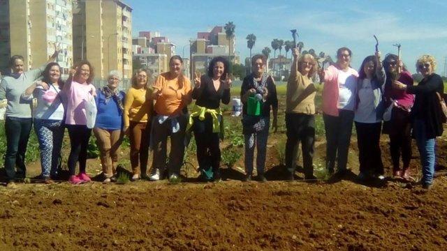 Distrito Sevilla organiza salidas a huertos urbanos por el Día Mundial Salud