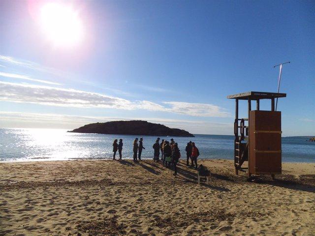 Proyecto 'Acosta't a la costa' de Calvià