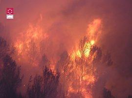 Compromís propone un plan de ganadería extensiva para prevenir los incendios forestales
