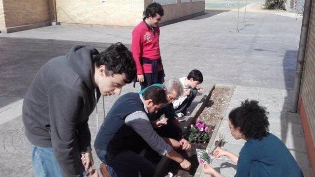 Actividades con niños con autismo en el instituto La Madraza