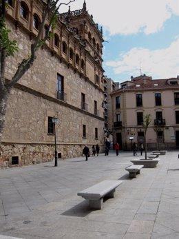 Palacio Monterrey de Salamanca.