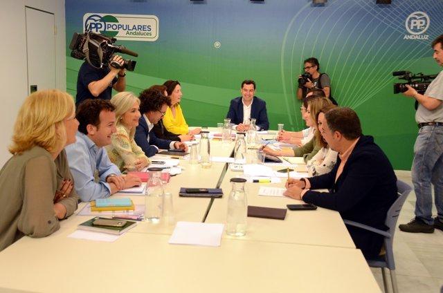 Reunión del Comité de Dirección del PP-A