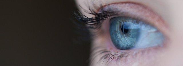 Ojo, retina