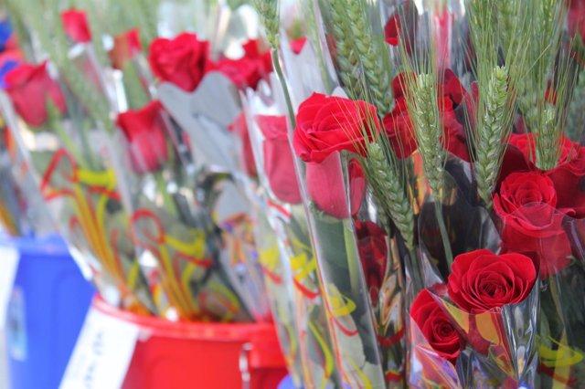 Venta de rosas en el día de Sant Jordi
