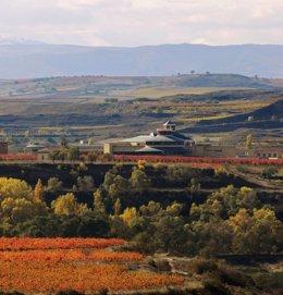 Bodegas Vivanco en otoño