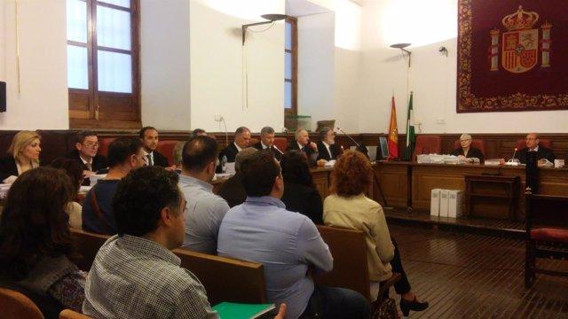 Primera sesión del juicio del caso Mercamed, con doce acusados