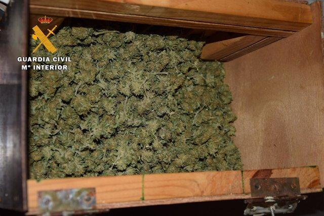 Marihuana decomisada en la operación