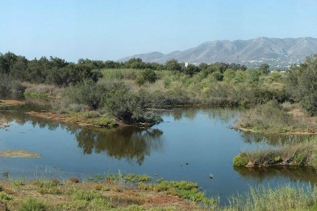 Desembocadura del guadalhorce paraje natural junta medio ambiente aves