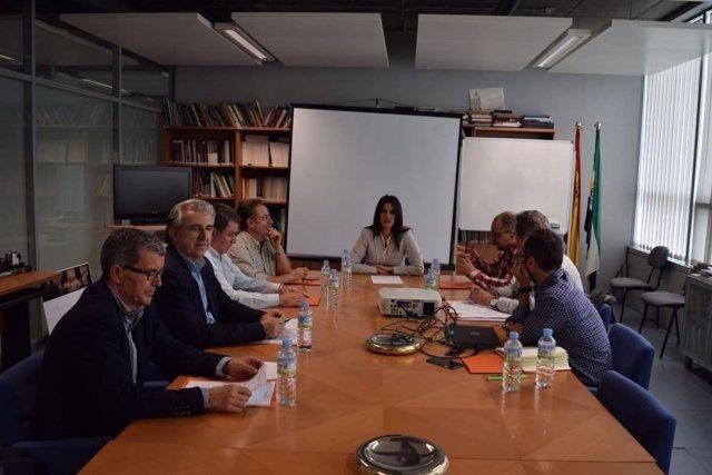 Reunión de la comisión ARMHEX