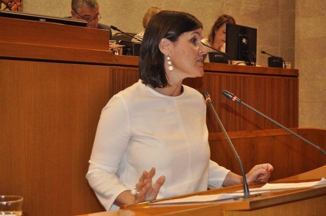 La diputada del PAR, Elena Allué.