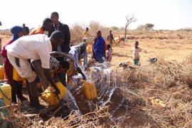 El aumento alarmante de la desnutrición infantil en Somalia podría provocar muertes a gran escala