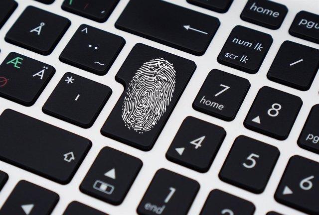 Ciberseguridad, robo de datos