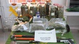 Detenidas cinco personas en Alcaraz e intervenidos 1,9 kilos de cogollos de marihuana
