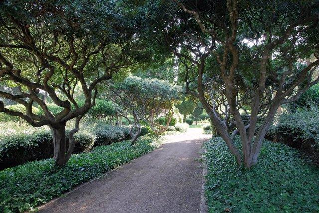Detalle de los caminos de los Jardines de Marivent en Palma