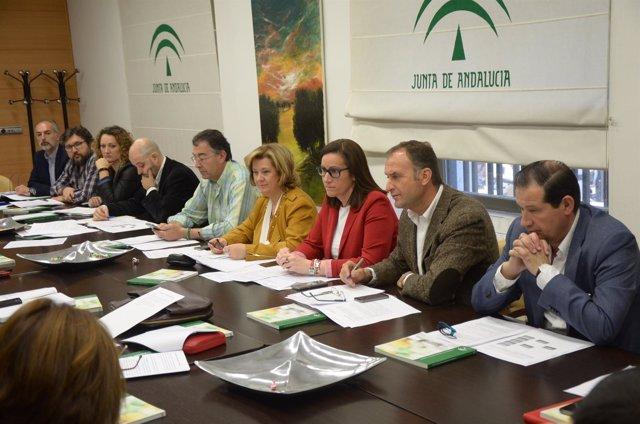 Reunión del Consejo Provincial de Drogodependencias de Jaén.