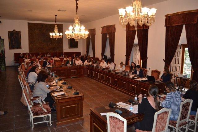 Reunión de Diputación de Córdoba con alcaldes y concejales de Igualdad