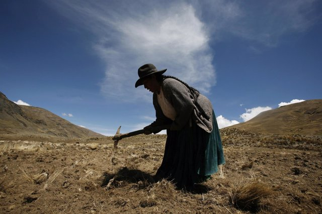 Campesina en Bolivia