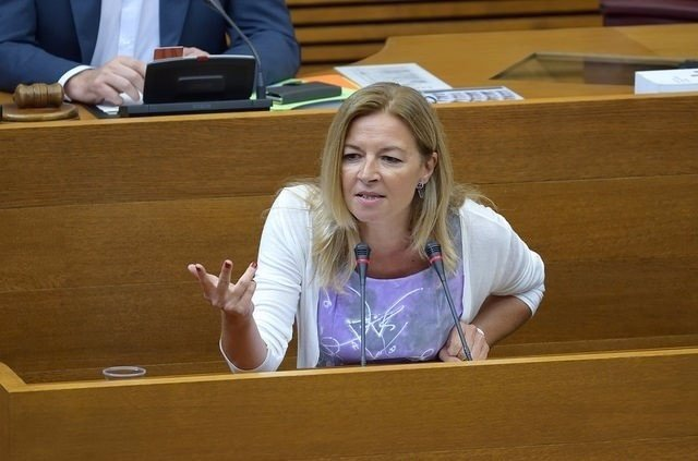 La diputada Concha Andrés en una de sus intervenciones